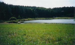 Działka z linia brzegowa, nad jeziorem z prawem budowy Kuligi