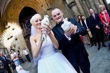 Białe,ślubne gołębie  (woj.dolnośląskie i opolskie)