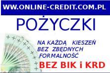 Pożyczka przez internet bez BIK I KRD